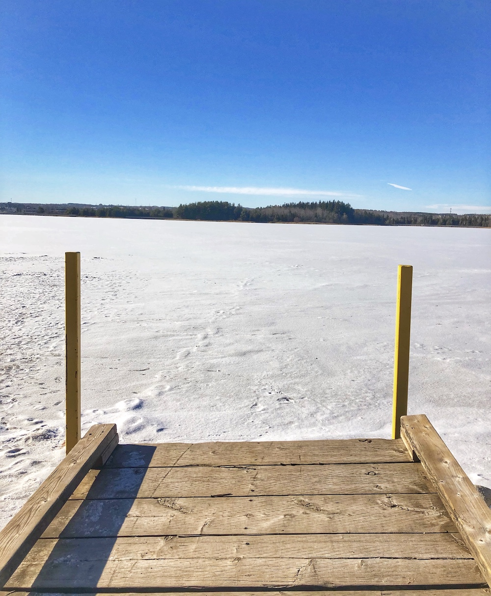 Island Lake Conservation Area - Winter
