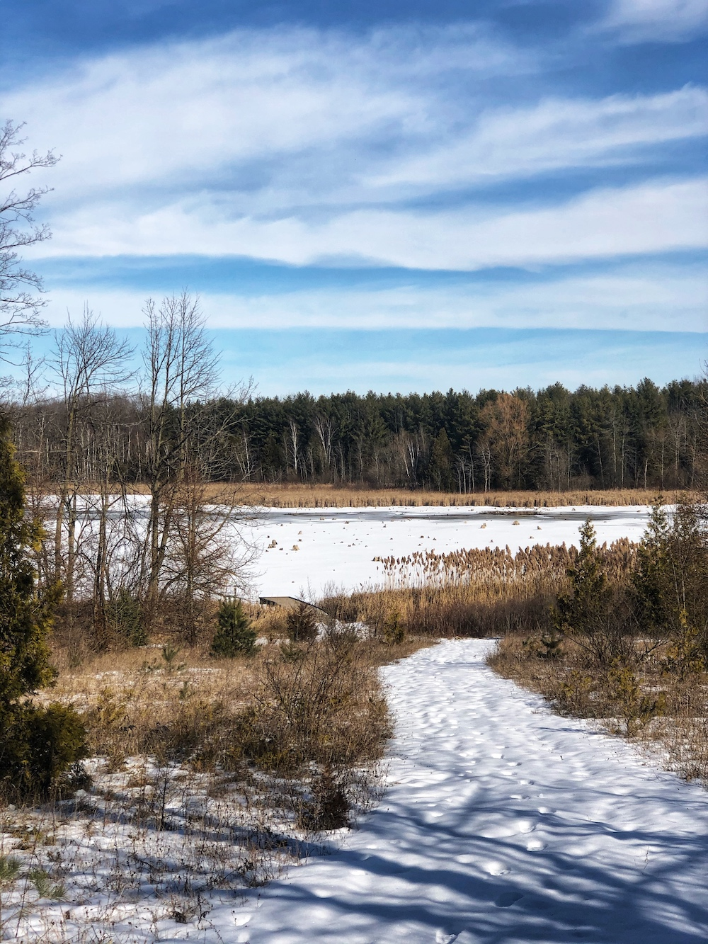 Valens Conservation Area 1