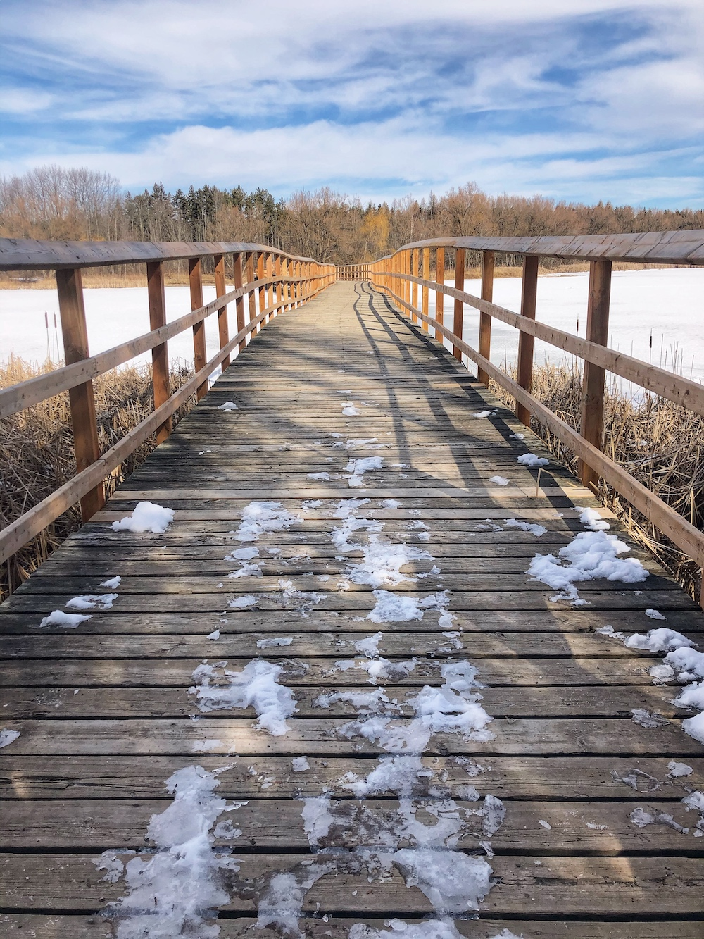 Valens Conservation Area 7