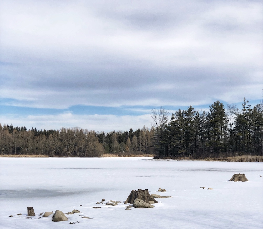 Valens Conservation Area 9