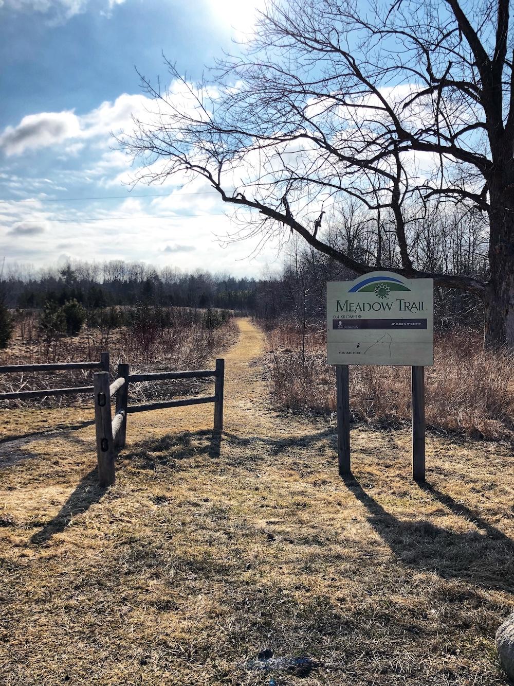 Ajax Conservation Area 4